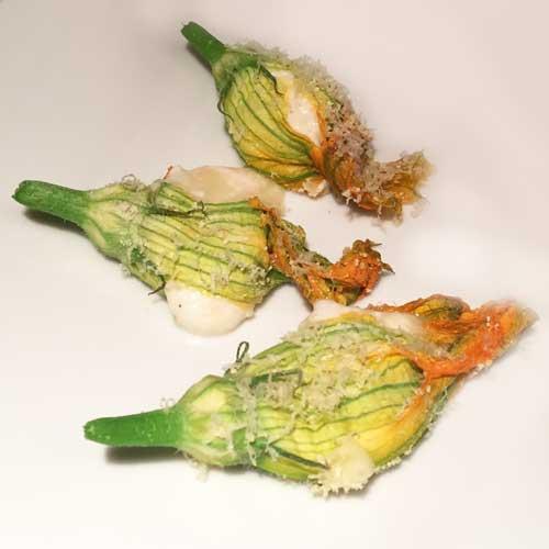 voorgerecht of hapje gevulde courgettebloemen uit de oven