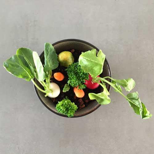 vegetarisch groentetuintje met minigroente en saus gribische op olijvenaarde